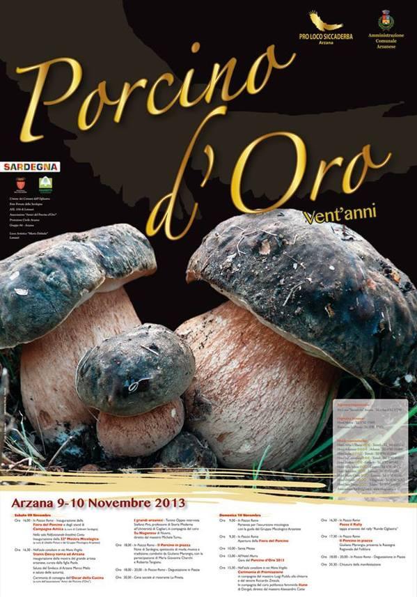 Porcino d' Oro 2013 ad Arzana