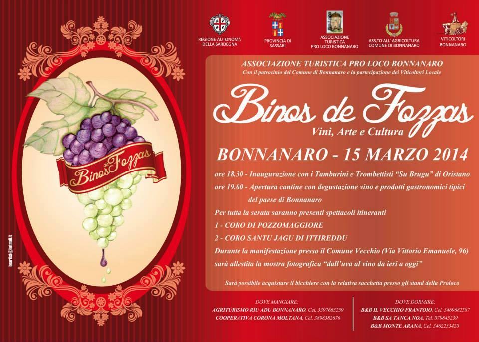 Binos de Fozzas 2014 - A Bonnanaro Sabato 15 Marzo
