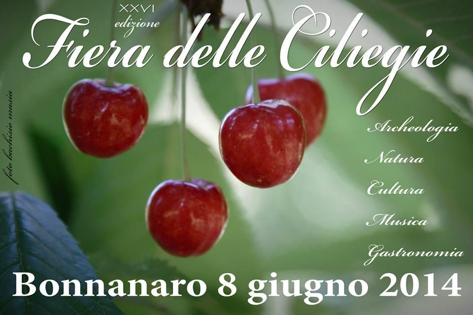 Fiera delle ciliegie 2014 a Bonnanaro - Domenica 8 Giugno 2014