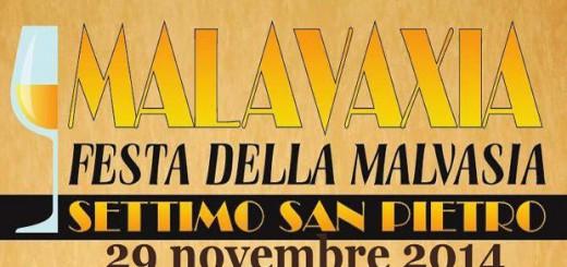 Festa della Malvasia a Settimo San Pietro - Sabato 29 Novembre 2014