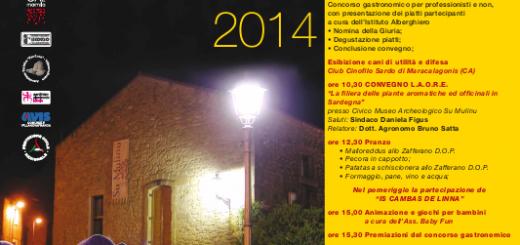 9^a Sagra dello Zafferano a Villanovafranca - Domenica 9 Novembre 2014