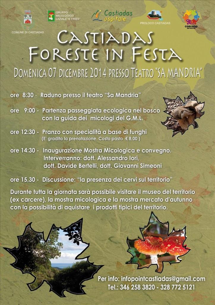 Foreste in Festa a Castiadas - Domenica 7 Dicembre 2014