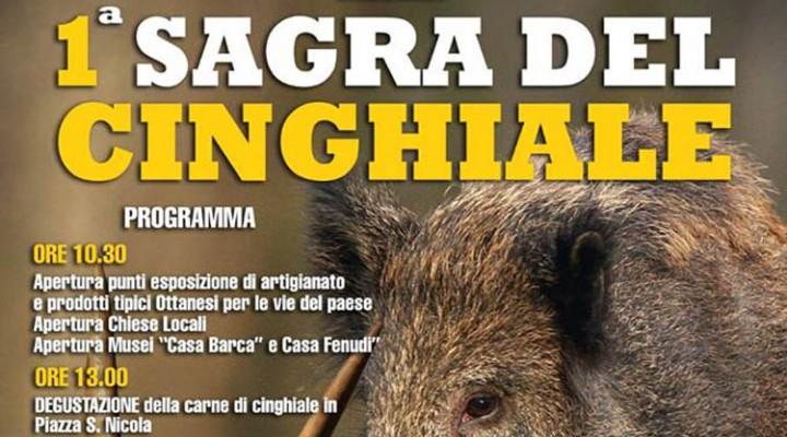 1^a Sagra del Cinghiale - Ad Ottana il 15 Marzo 2015