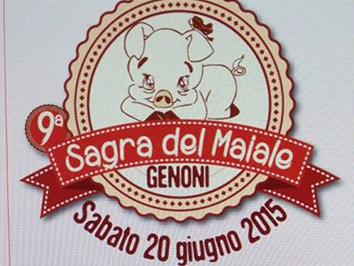 9^a Sagra del maiale a Genoni - Sabato 20 Giugno 2015