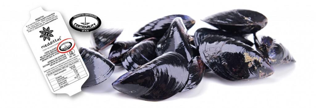 Nieddittas - Le Cozze del Golfo di Oristano