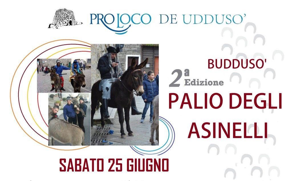 2^ edizione del Palio degli Asinelli a Buddusò - Sabato 25 Giugno 2016