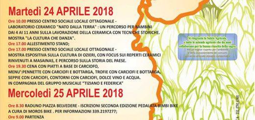 15^ Sagra del Carciofo di Masainas - 24 e 25 aprile 2018