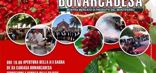 Sagra delle Ciliegie 2014 a Bonarcado