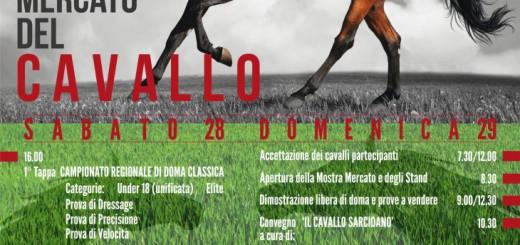 Mostra Mercato del Cavallo 2014 a Laconi