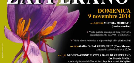 XXI Sagra dello Zafferano a Turri - Domenica 9 Novembre 2014
