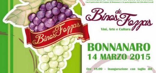 4^a edizione Binos de Fozzas a Bonnanaro - Sabato 14 Marzo 2015