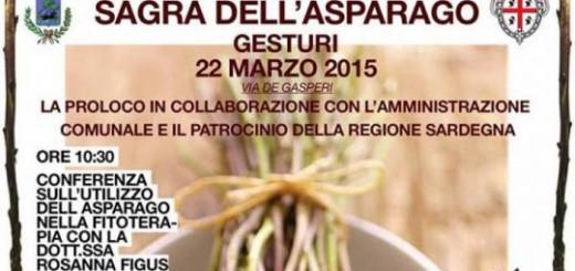 Sagra dell'asparago 2015 a Gesturi - Domenica 22 Marzo