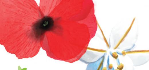 Primavera nel Marghine, Ogliastra e Baronia a Lanusei – Dal 26 al 28 Giugno 2015