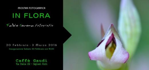 In Flora, mostra fotografica di Fabio Corona - A Cagliari dal 20 Febbraio al 3 Marzo 2016