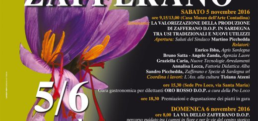 XXIII Sagra dello Zafferano a Turri - Sabato 5 e domenica 6 novembre 2016