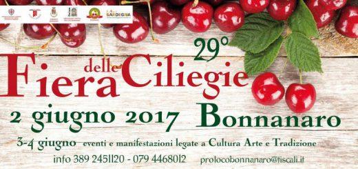 29^ Fiera delle Ciliegie di Bonnanaro - Dal 2 al 4 giugno 2017