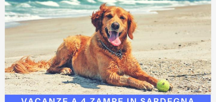 Vacanze a quattro zampe in Sardegna