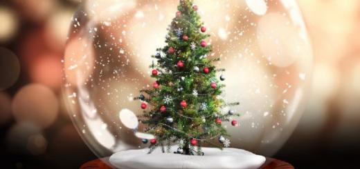 Da Natali a Li Tre Re: la programmazione natalizia ad Arzachena